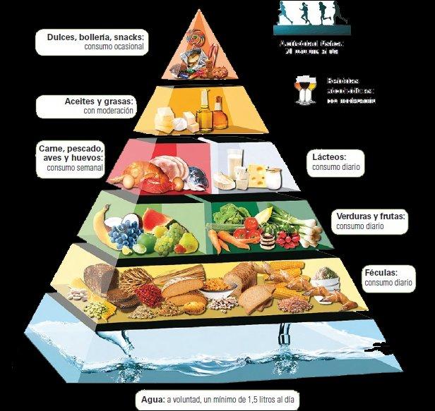 pirc3a1mide alimenticia1274864093 - Tu Salud ,una cuestión de educación...